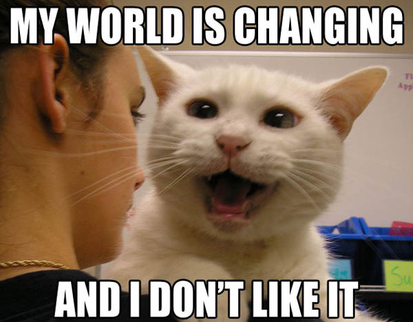 world changing change dont like it lol cat macro
