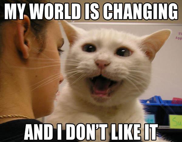 world changing change dont like it lol cat macro