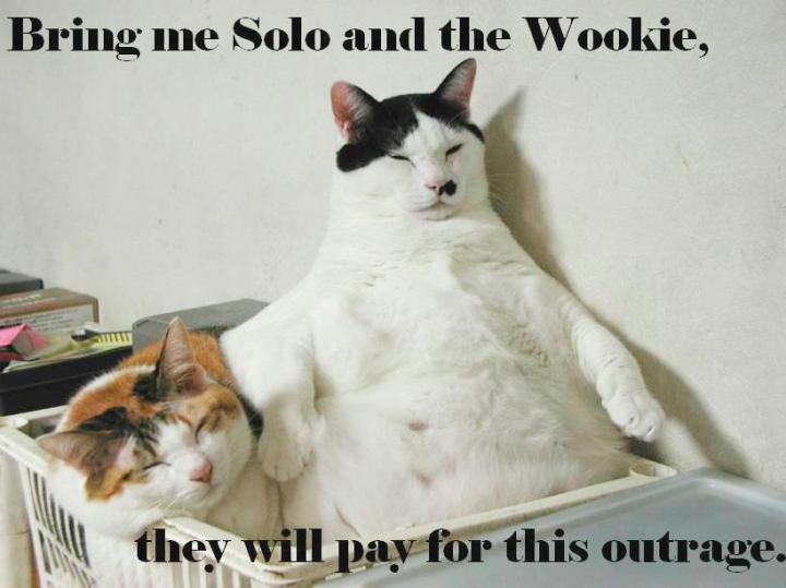 star wars jabba the hutt solo wookie return of the jedi fat lol cat macro