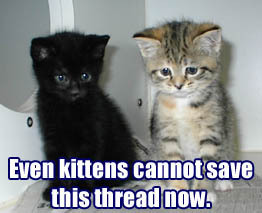 thread post fail kittens cant save it now lol cat macro
