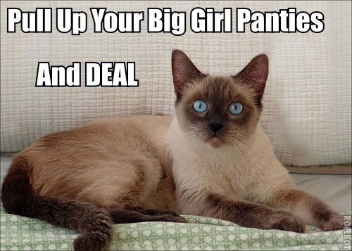 big girl panties blouse deal with it drama wank lol cat macro