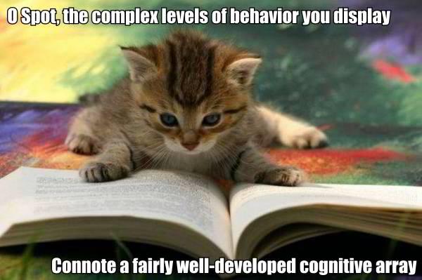 star trek data poem spot complex behaviour cognitive lol cat macro