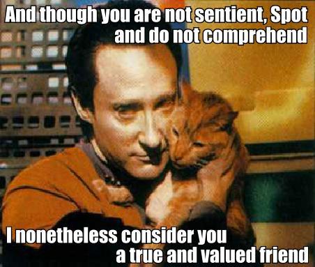 star trek data poem sentient comprehend valued friend lol cat macro