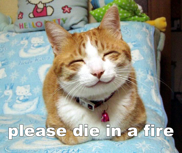 diaf die in a fire pleased happy lol cat macro