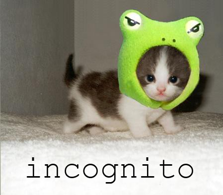incognito frog hat head spy anonymous lol cat macro