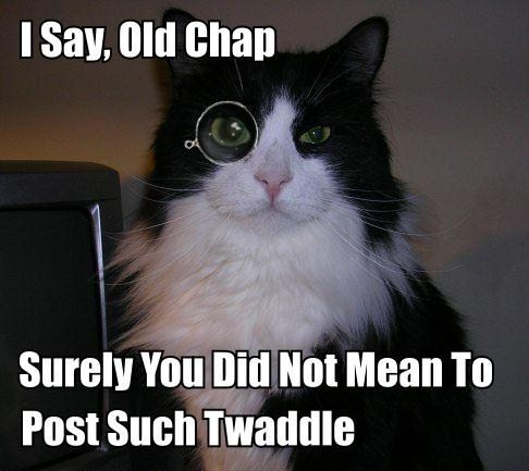 posh upper class english monocle bullshit lol cat macro