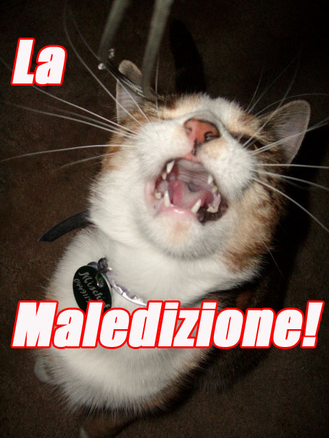 maledizione curse rigoletto opera singing lol cat macro