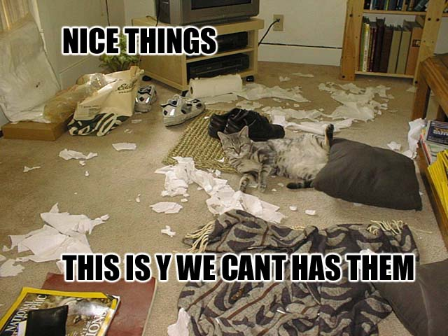 nice things meme messy room destroyed destruction lol cat macro