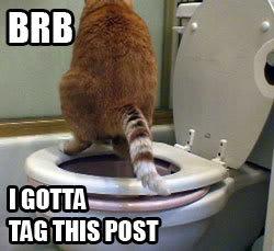 brb pooping bathroom toilet tag post lol cat macro