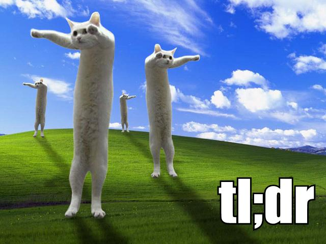 too long didnt read tldr longcat lol cat macro