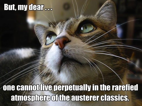 constant lambert critic po faced cat looking up lol cat macro