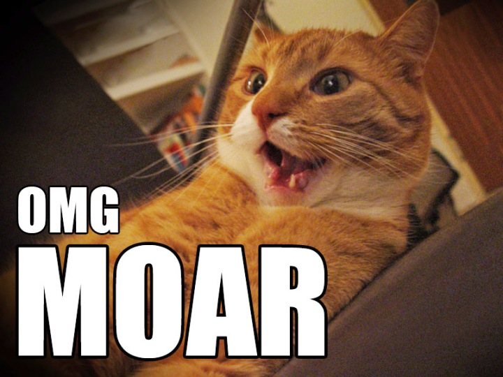 excited give me moar omg lol catmacro