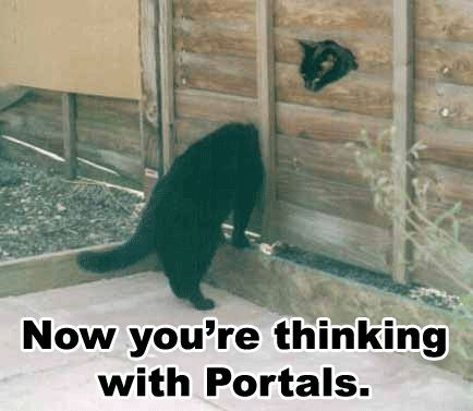 black cats with head stuck in fence portals gamers lol cat macro