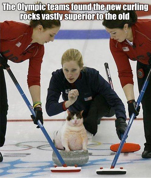 curling rocks winter olympics gold medal ice lol cat macro