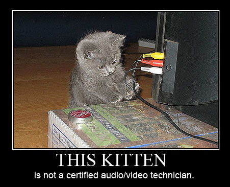 average cats i'll fix it meme kitten fixing a pc computer it lol cat macro