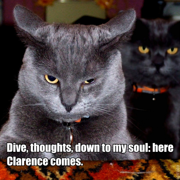 richard iii shakespeare lol cat macro