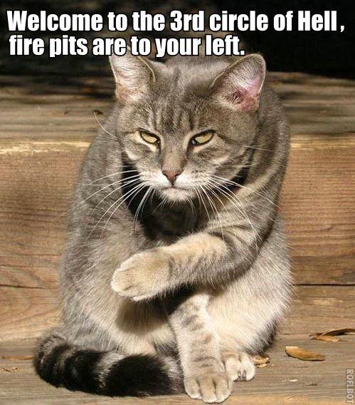 paw pointing hell devil inferno dante satan torment sinner lol cat macro