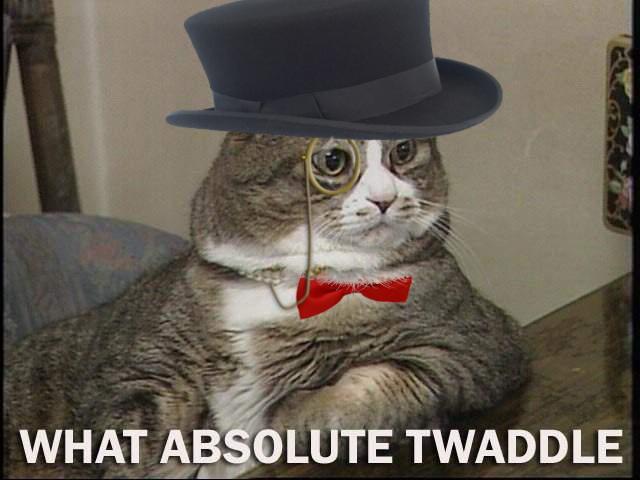 Monocle Cat Meme