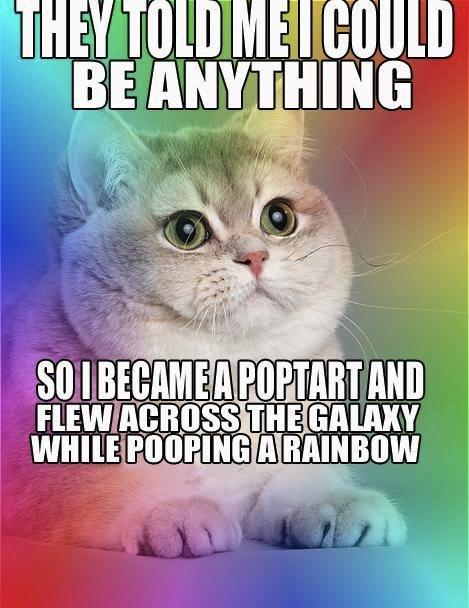nyan_cat_poptart_rainbow_meme_clarinet_boy_flying_macro
